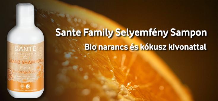 SanteB